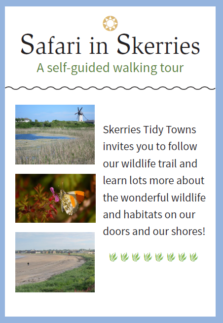 Tidy Towns Safari Trail
