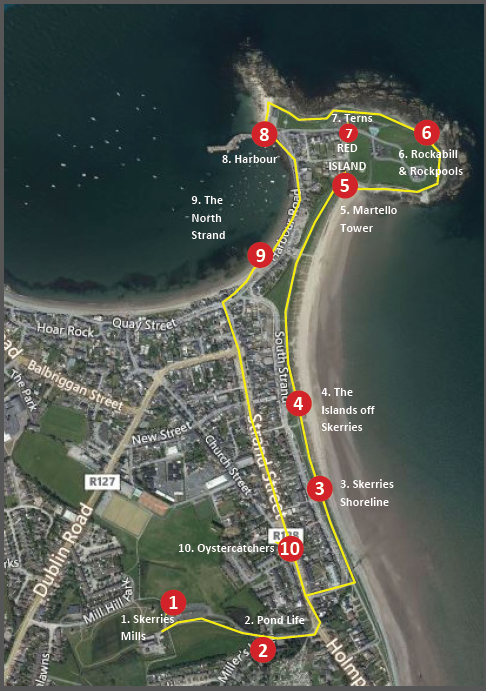 Tidy Towns Trail map