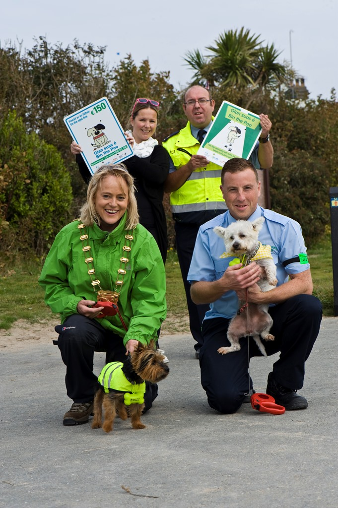 Dog Walking Volunteer Dublin
