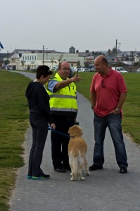 Green Dog Walkers 2014 (8)