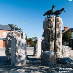 tidy towns May 2014 oyster catchers